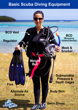 basic scuba dive gear