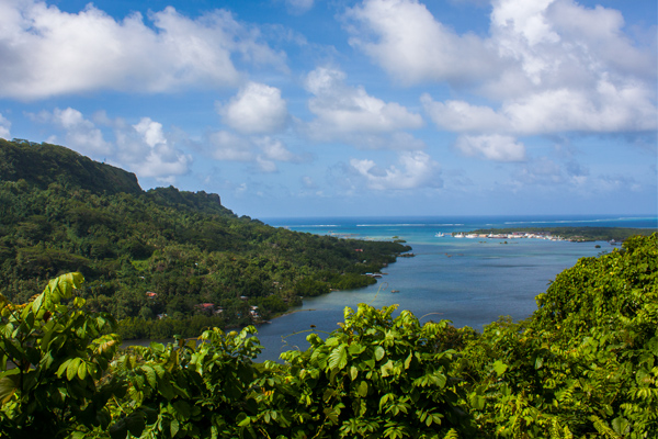 Pohnpei Cupid's View