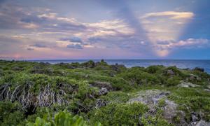 1000 Steps Beach Horizon Guam