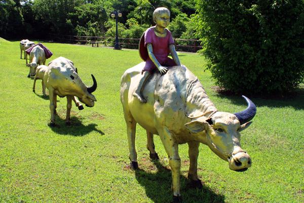Bulls Chinese Park Guam