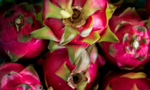 Dragon Fruit Farm To Table Guam