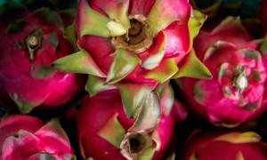 Dragon Fruit Farm to Table Guam