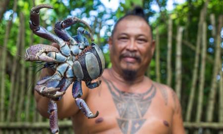 linala man coconut crab guam